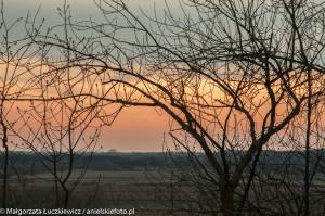 zachod slonca nad Biebrza 300x199 zachód słońca nad Biebrzą
