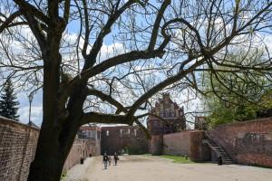 Toruń zamek krzyżacki 300x200 Toruń zamek krzyżacki