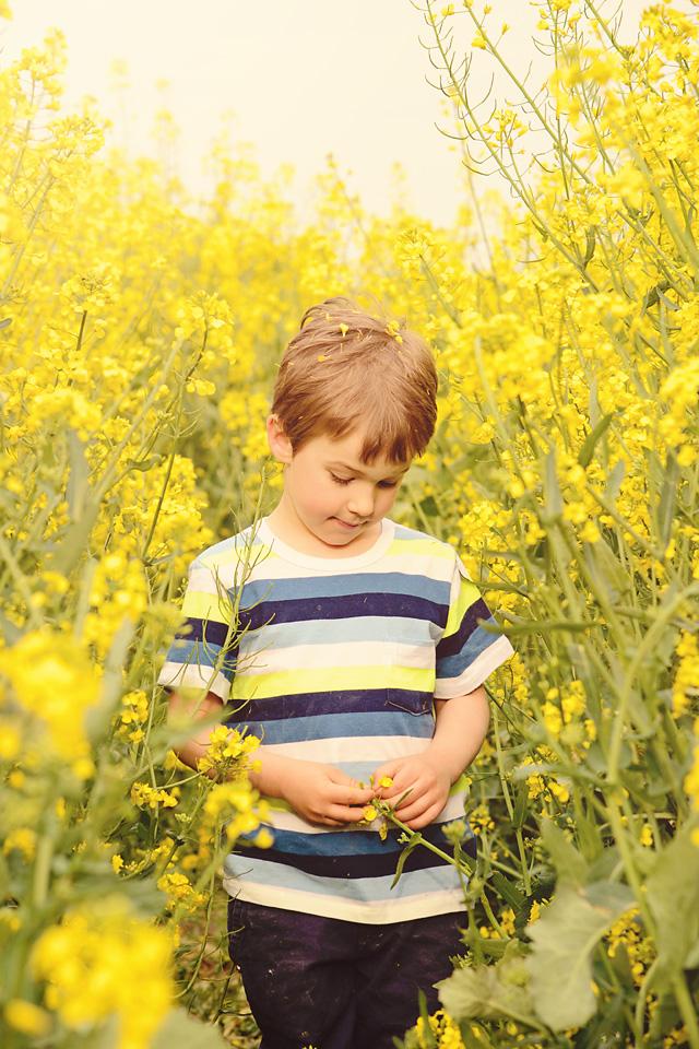 sesja dziecieca w rzepaku Olo   sesja zdjęciowa w rzepaku