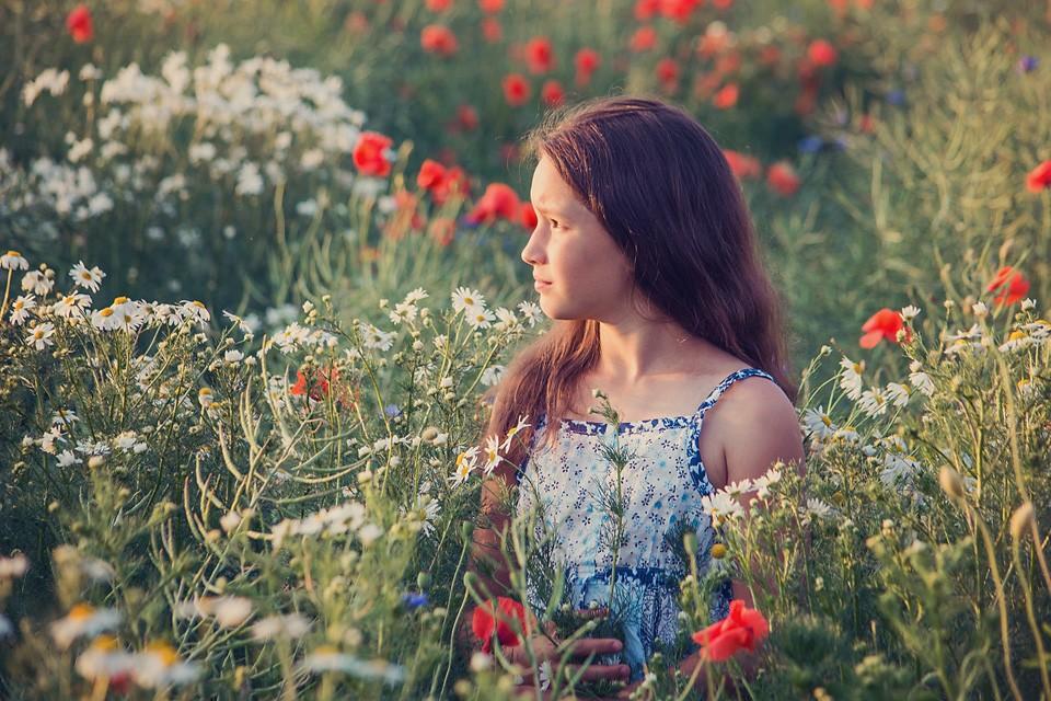 maki chabry rumianki 960x640 Portfolio