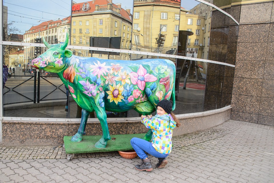 Wroclaw kolorowa krowa 960x641 Weekend we Wrocławiu