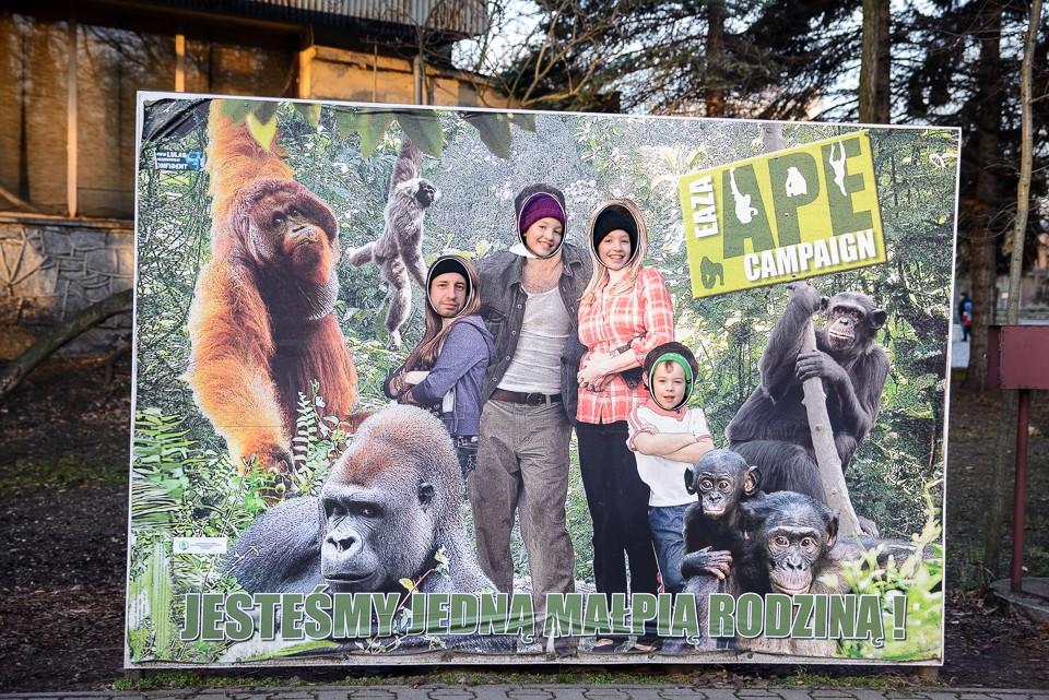 Zoo Wroclaw 960x641 Weekend we Wrocławiu