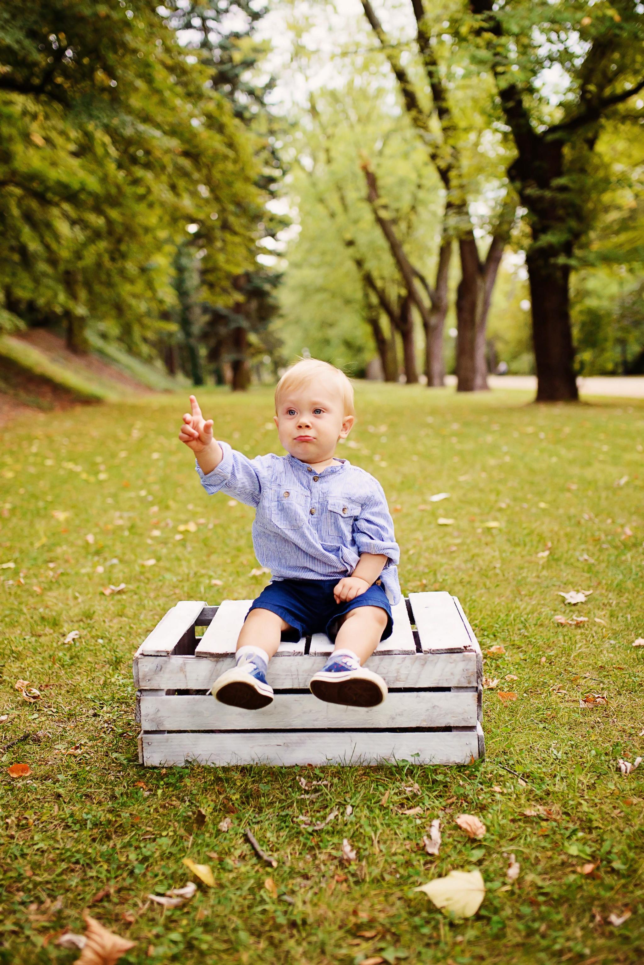 sesja fotograficzna urodziny Sesja z okazji pierwszych urodzin Aleksa